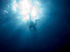 Diver surfacing from below